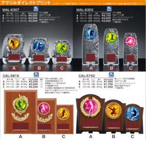 各競技選択楯 MAL-6307・MAL-6303・CAL-5816・CAL-5742